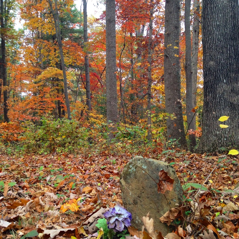 Slave graveyard in the fall woods. Asheville, NC. By Calm Cradle Photo & Design