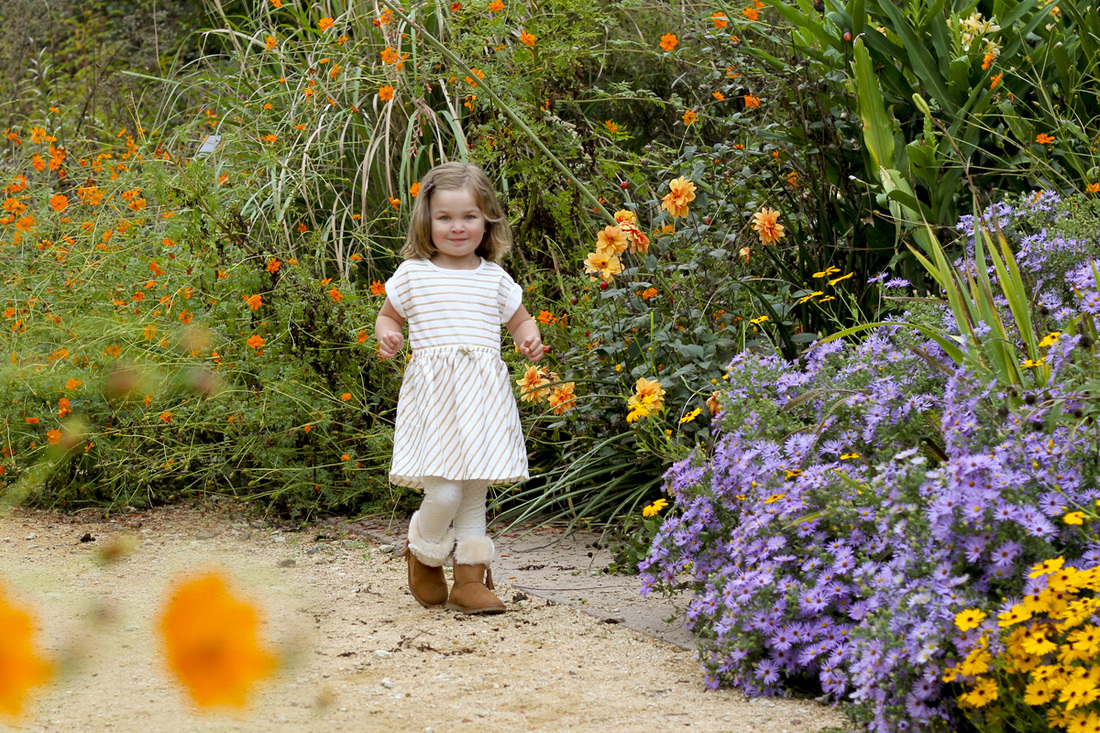 3-year-old portrait in the garden. By Calm Cradle Photo & Design