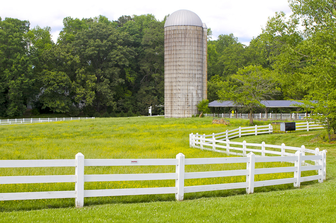 Looking for family-friendly activities in North Carolina? Pittsboro-Chapel Hill outdoors: Pizza, music and wandering the farm at Fearrington Village. North Carolina (NC). By Calm Cradle Photo & Design