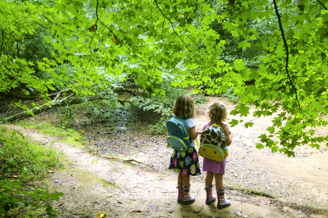 This series is a great resource on family-friendly outdoors activities in and around Pittsboro and Chapel Hill, North Carolina (NC). Hiking the Piedmont Nature Trails at the NC Botanical Garden. By Calm Cradle Photo & Design