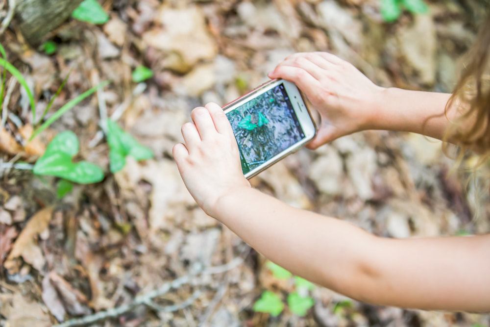 A fantastic e-course for kids to start building photography skills! Documenting Your Life Through Photography: An Introductory Course for Elementary and Middle Schoolers. By Julia Soplop of Calm Cradle Photo & Design (Chapel Hill, NC)