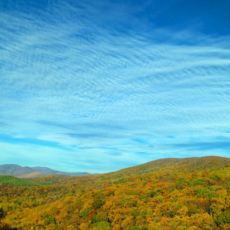 Fall foliage. Blue Ridge Mountains, Virginia. By Calm Cradle Photo & Design
