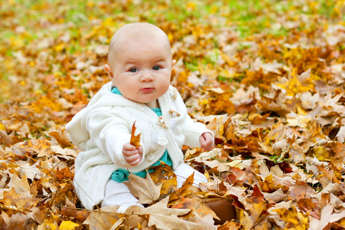 Portrait: 6-month-old baby in teal sitting in orange leaves. By Calm Cradle Photo & Design