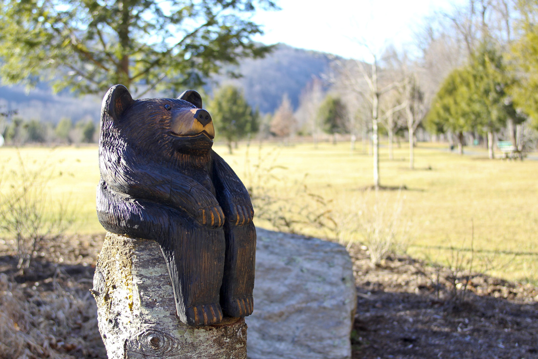 Carved bear at Valle Crucis Community Park. Calm Cradle Photo & Design