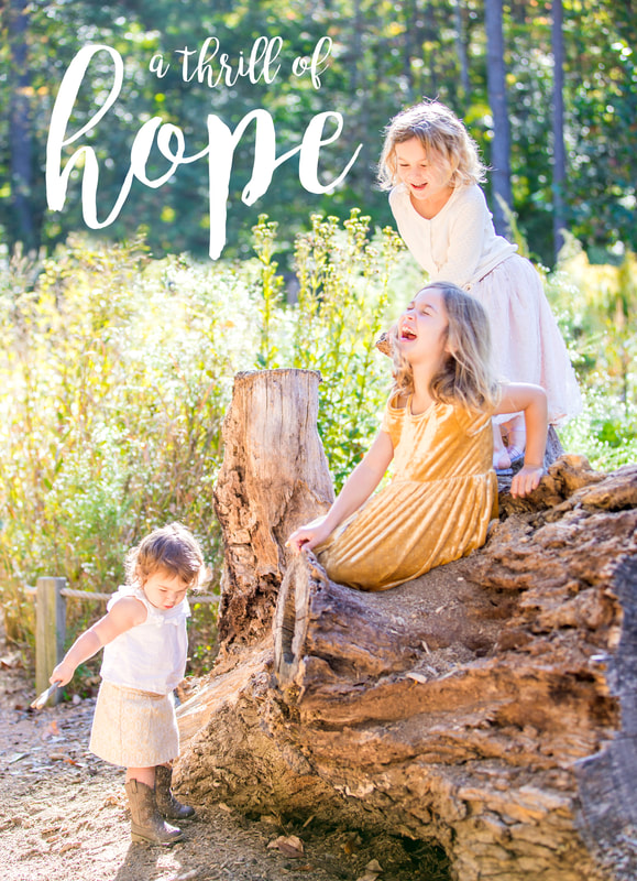 Holiday card design. Portraits: three sisters in golden light.  A thrill of hope. Calm Cradle Photo & Design (Chapel Hill, NC)